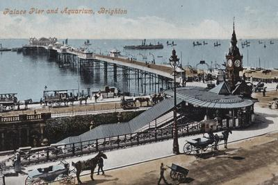 Palace Pier and Aquarium, Brighton