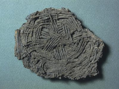 Fragment of Wicker Basket, from Castione Marchesi, Province of Parma
