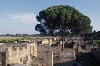View of Excavations of Ostia Antica, Rome, Lazio, Italy