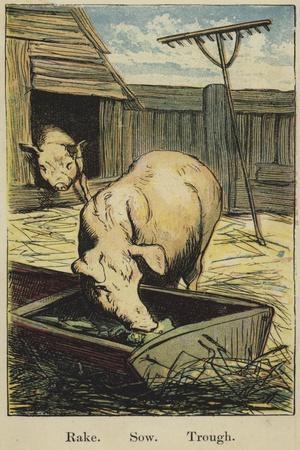 The Farmyard Alphabet