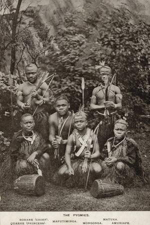 The Pygmies