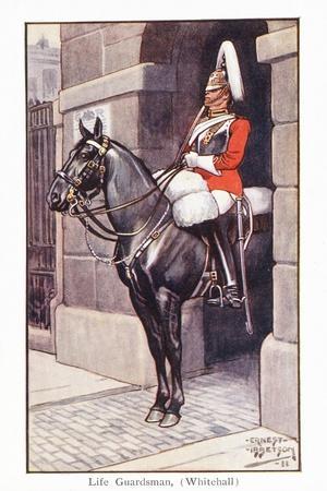 Life Guardsman