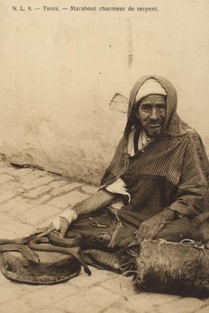 Tunisia - Marabout Snake Charmer