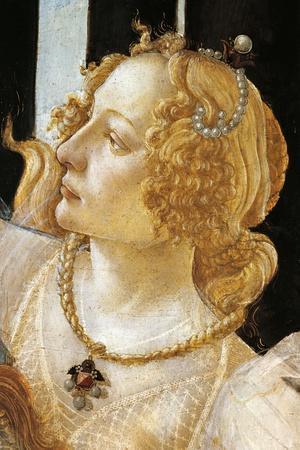 Spring, Circa 1482