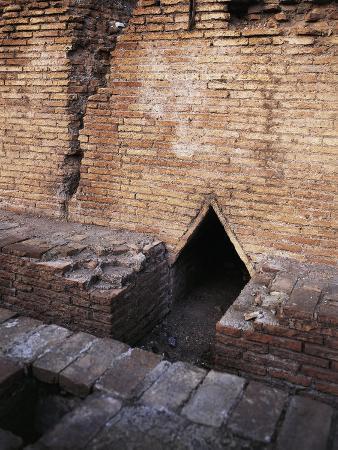 Italy, Latium Region, Rome, Colosseum