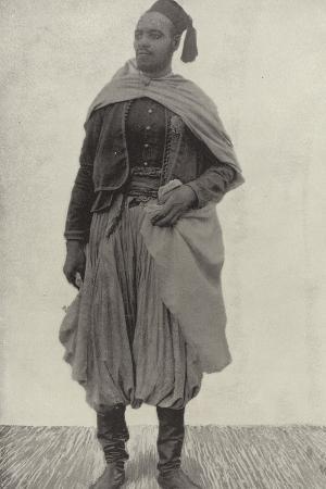 The Tall Algerian