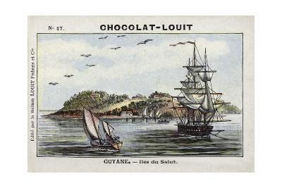 Iles Du Salut, French Guiana