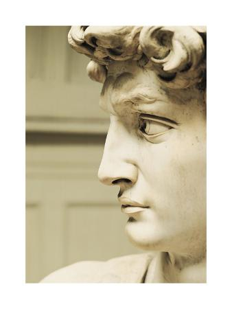 David, 1501-1504