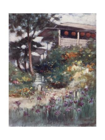 An Iris Garden