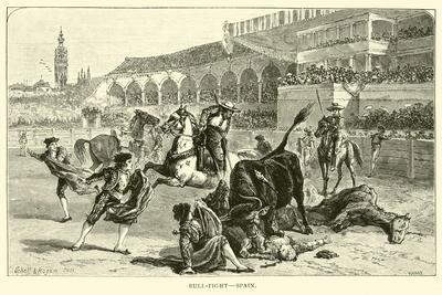 Bull-Fight, Spain