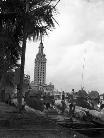 Pt Boats Docked at the Port of Miami
