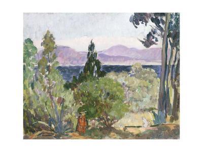 Landscape at Noon