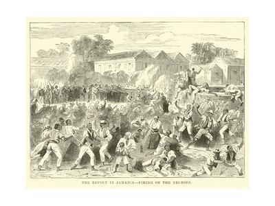 The Revolt in Jamaica, Firing on the Negroes
