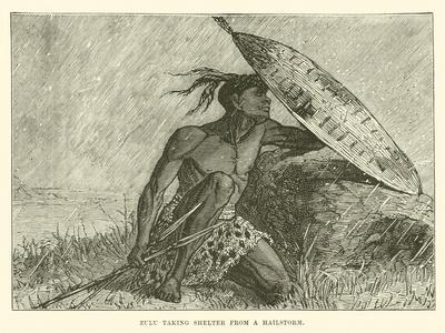 Zulu Taking Shelter from a Hailstorm