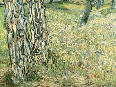 Tree Trunks in Grass, 1890