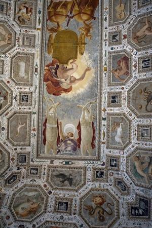 Ceiling, Chiericati Palace