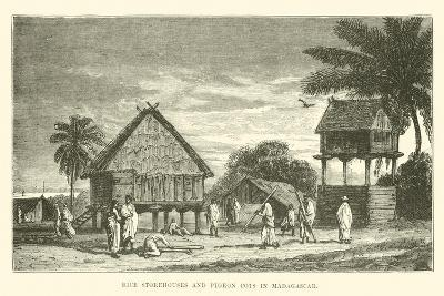 Rice Storehouses and Pigeon Cots in Madagascar