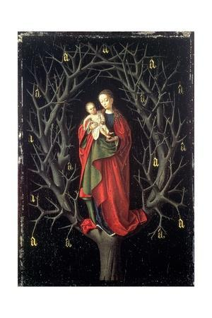 Our Lady of the Dry Tree C.1450