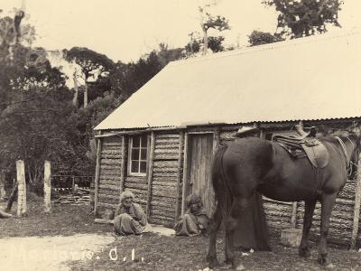 Morioris, C.I., C.1900