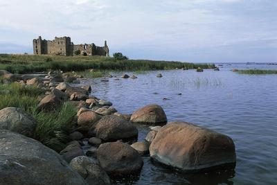 Ruins of Toolse Castle