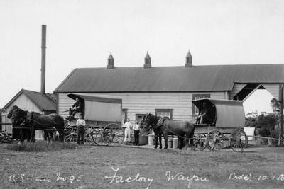 Waipu Dairy Factory, 1916