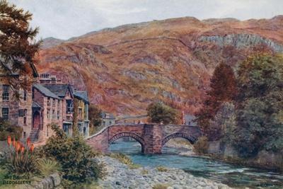 The Bridge, Beddgellert