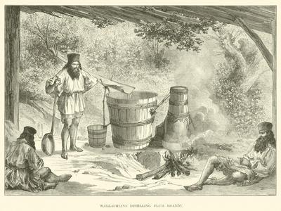 Wallachians Distilling Plum Brandy