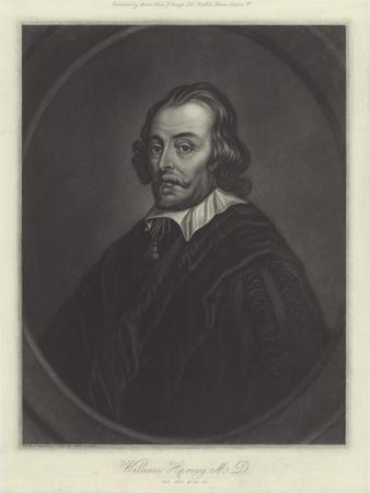 William Harvey, English Physician