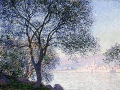 Antibes Seen from the Salis, 1888
