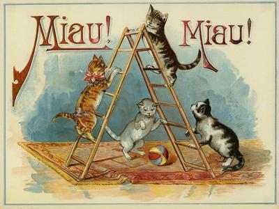 Four Kittens Playing with a Ball and a Ladder