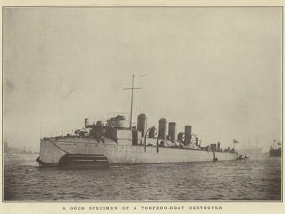 A Good Specimen of a Torpedo-Boat Destroyer