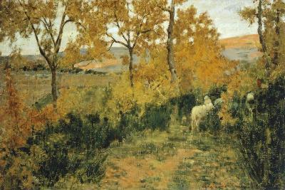 Golden Forest in Montemiccioli, 1891