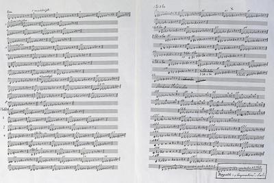Handwritten Score of the 113 Scales of Ferruccio Busoni
