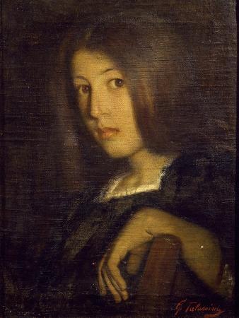 Portrait of Nephew Angelina