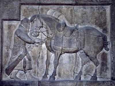 Horse Figures, Relief from Emperor T'Ai Tsung's Tomb in Hsi-An