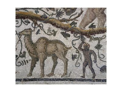 Black Man and Camel, Detail from So-Called Mosaic of Silenus of Thysdrus