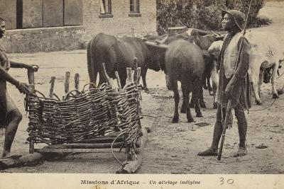 Missions in Africa - an Indigenous Cattle-Drawn Cart