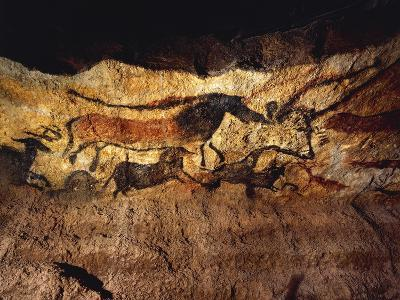 France, Vezere Valley, Images of Animals, Wall Painting in Lascaux Cave