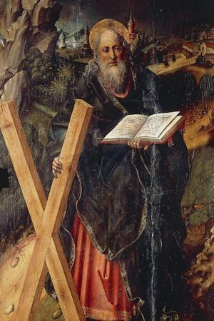 St Andrew, Detail from the Triptych of the Virgin of the Rose with Saints Andrew and Christopher
