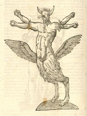 "Illustration of ""Monstrum Tetrachiron Alatum Capite Humano Aurito"""