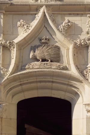Porcupine, Louis XII Emblem, Decorative Detail from Louis XII Wing, Royal Chateau De Blois