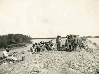 African American Workers on Roadbed for Fec Railway Oversea Extension, C.1907
