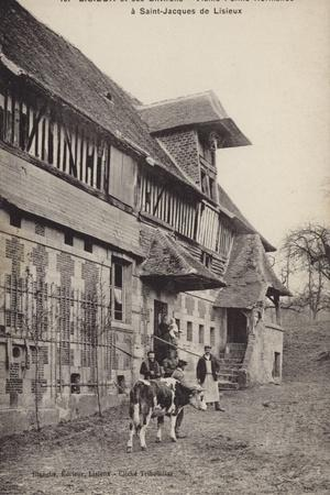 Postcard Depicting a Group of People Standing Outside a Farm Building with a Bull