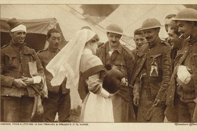 Canadian Troops Presenting a Nurse with a Dog They Found in a German Trench, World War I