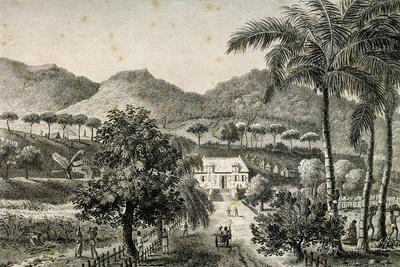 House on Road to Moka, Ile-De-France, Mauritius, Engraving by Jacques Gerard Milbert