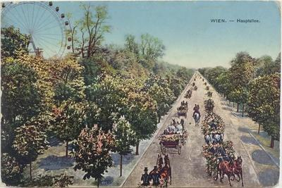 Postcard Depicting the Hauptallee, the Main Avenue in Vienna, End of 19th Century