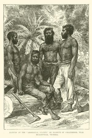 """Natives at the """"Aboriginal Station,"""" or Reserve of Coranderrk, Near Healesville, Victoria"""