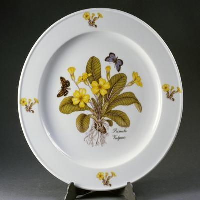 Painted Plate Decorated with Primula Vulgaris