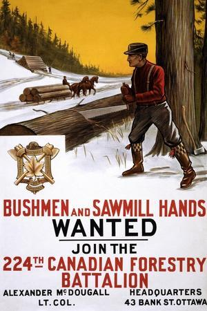 Bushmen and Sawmill Hands Wanted