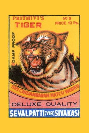 Prithivi's Tiger